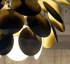Mynd af Discoco Gold/Black 68cm