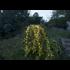 Mynd af Ljósasería utandyra - STÓR - 360 LED ljósgjafar